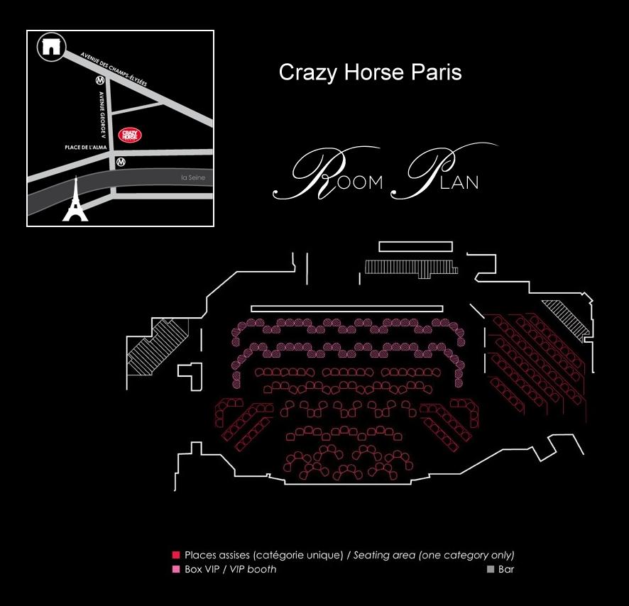 Crazy horse paris single stocking dancer 2